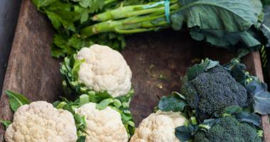 Je kapustovitá zelenina skutočne taká hodnotná pre naše zdravie?
